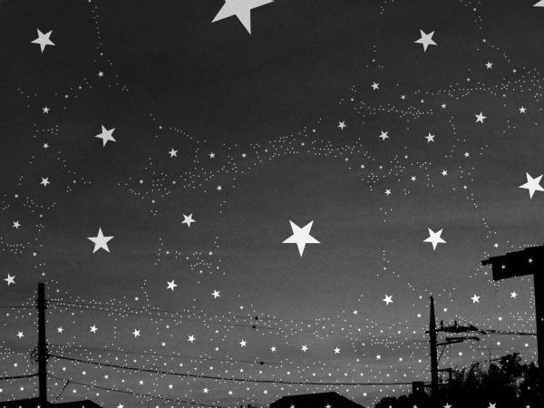 満天の星空の下で生まれるのはロマン?それとも…?