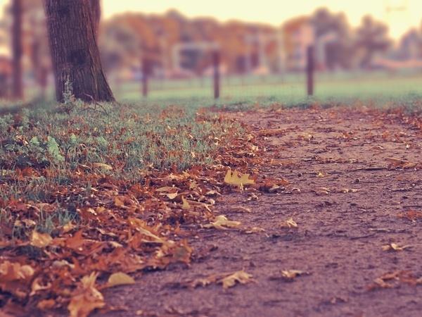 秋風の吹くなか、待つ恋の切なさを歌った額田王