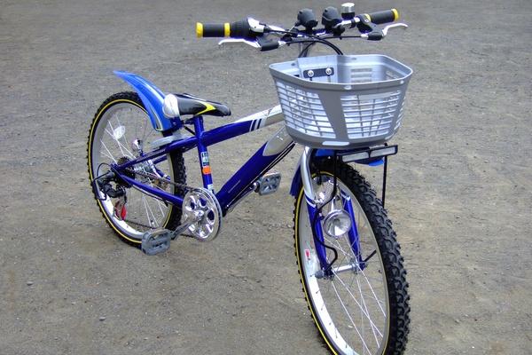 子どもの頃乗っていた自転車は?