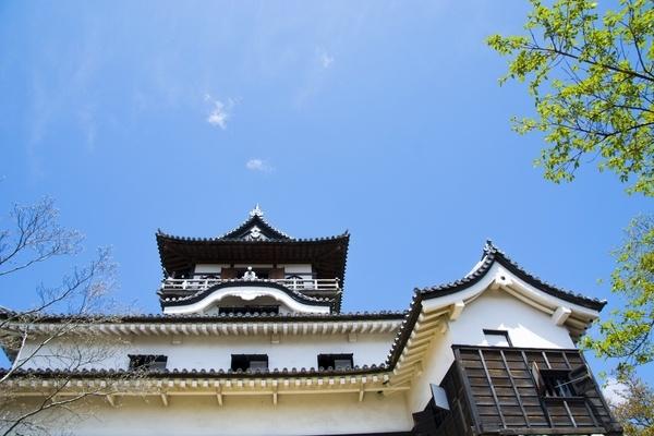 犬山城で恋愛祭り