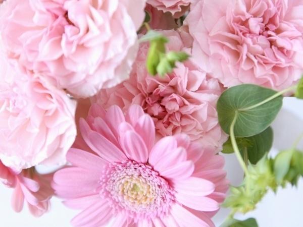 ピンク=女性のイメージが定着した5つの理由